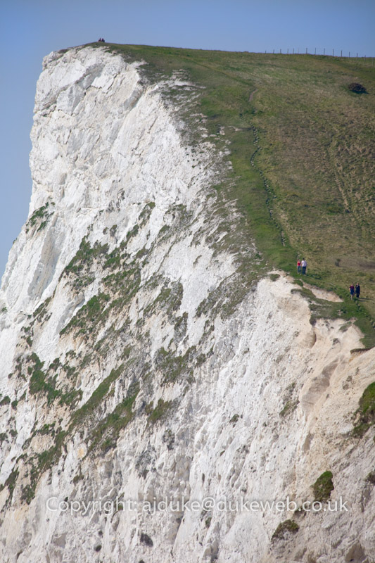 Cliffs, Jurassic Coast World Heritage Site, Dorset, England, UK