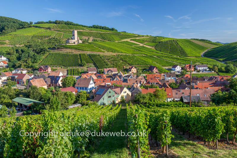 Katzenthal village and surrounding vinyards on the wine route in Alsace, France