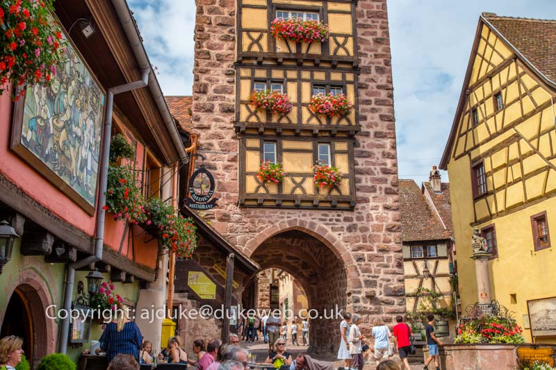 Riquewihr wine route village, Alsace, France